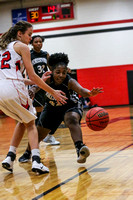 Forestview at South Point Varsity Girls Basketball 2016-17