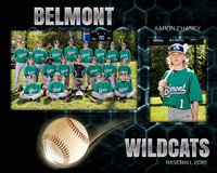 Belmont Middle Baseball 2018
